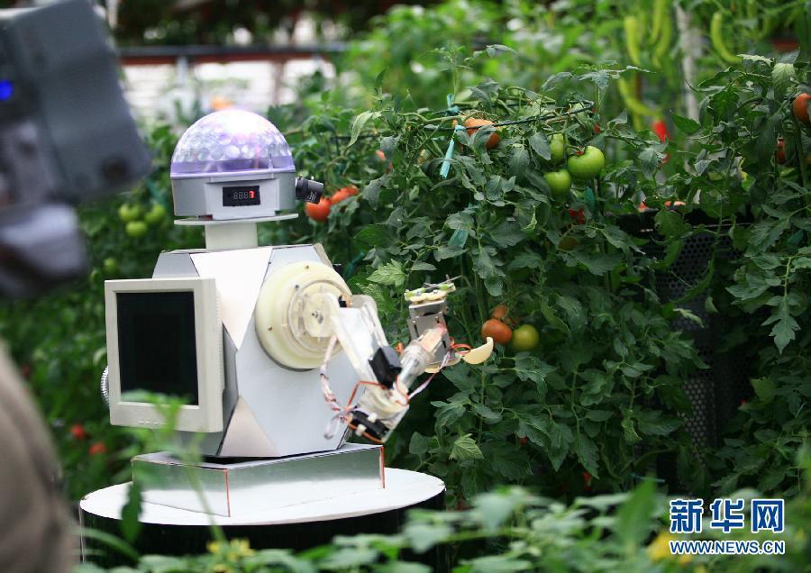 روبوت رش المحاصيل الزراعية