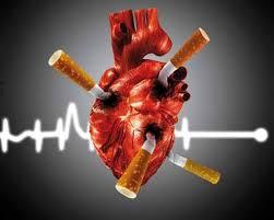 القلب -نقش