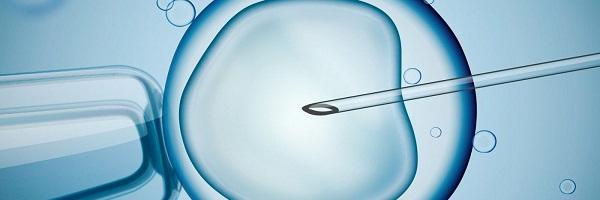 تقنيات المساعدة على الحمل