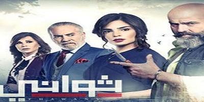 نبذة عامة عن المسلسل اللبناني ثواني